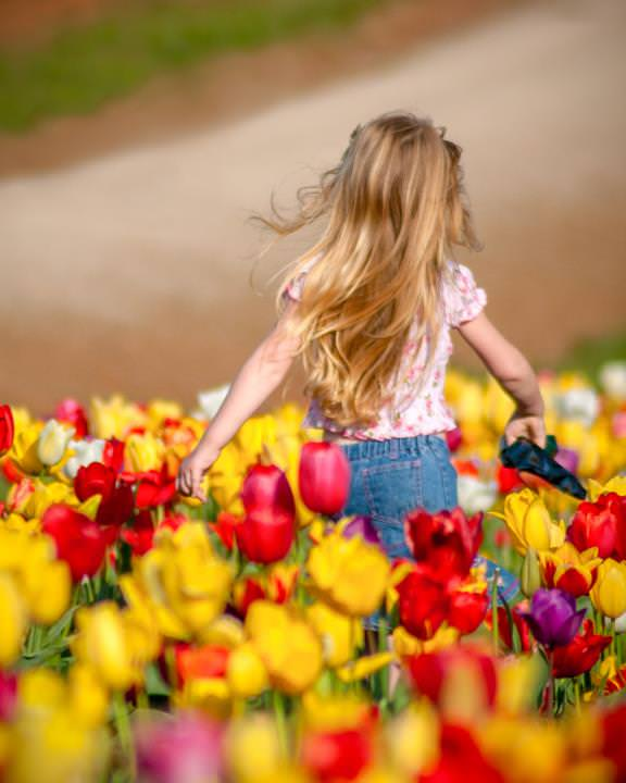 Young and free - running through the tulip fields